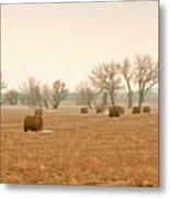 Field Of Hay Metal Print