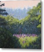 Field Of Lupines Deer Island Metal Print