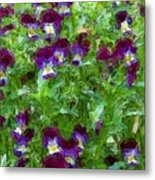 Field Of Pansy's Metal Print