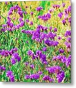 Field Of Purple Flowers Metal Print