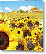 Field Of Sunflowers Metal Print