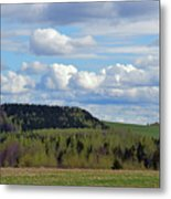 Field To Forest To Hill To Sky Metal Print