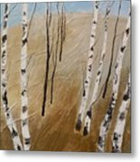 Field With Birches Metal Print