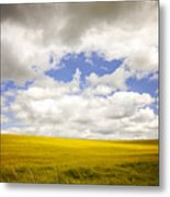 Field With Dramatic Sky. Metal Print
