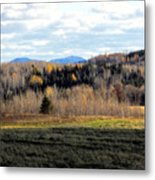Fields And Folds Metal Print