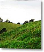 Fields In Glastonbury Metal Print