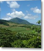 St. Kitts Fields Of Cane Metal Print