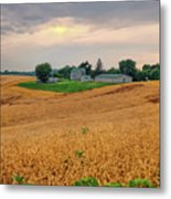 Fields Of Gold, Illinois Metal Print