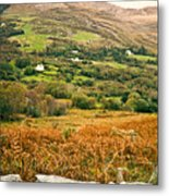 Fields Of Ireland Metal Print