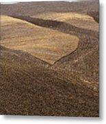 Fields Of Tuscany Metal Print