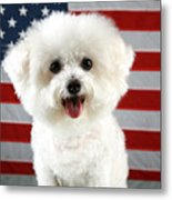 Fifi Loves America Metal Print by Michael Ledray