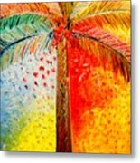 Fig Palm Sunset Metal Print