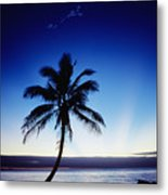 Fiji Sunset Metal Print