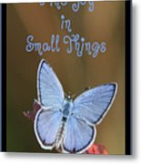 Find Joy In Small Things Metal Print