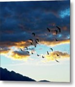 Finding Formation Metal Print