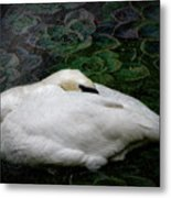 Finding Rest In Nature Metal Print