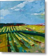 Fine Fields Metal Print