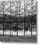 Fine Trees Metal Print
