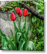 Fine Wine Cafe Red Tulips Metal Print