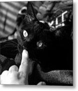 Finger Kiss Cat Metal Print