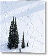 Fir And Snow Metal Print
