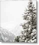 Fir Trees And Mountains Metal Print