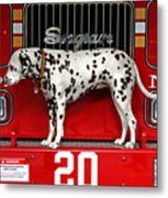 Fire Dog Metal Print
