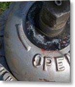 Fire Hydrant 2 Metal Print