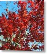 Fire Tree I Metal Print