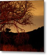 Fire Tree Metal Print