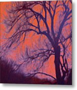 Fire Willow Metal Print