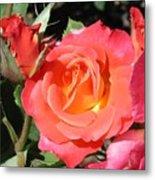 Firey Passion Rose Metal Print