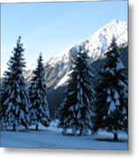 Firs In The Snow Metal Print