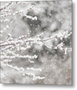 First Day Of Spring 2015 New Jersey Metal Print