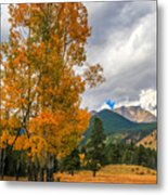 First Fall Colors In Rocky Mountain National Park Metal Print