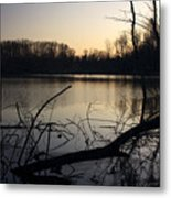 First Light Of Spring Metal Print