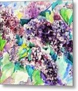 First Lilac. Metal Print