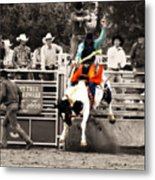 First Out Of The Chute Metal Print