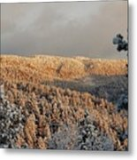 First Rays Of The Day Metal Print