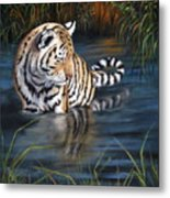 First Reflection Metal Print