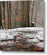 First Snowfall - A Walk In The Woods Metal Print