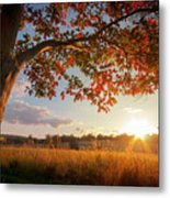 First Touch Of Autumn Metal Print