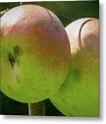 First Year Of Apples 0922pa Metal Print