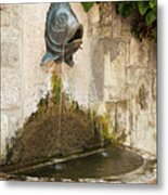 Fish Fountain Metal Print