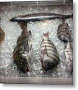 Fish Market Metal Print