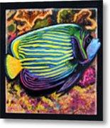Fish Number 2 Metal Print