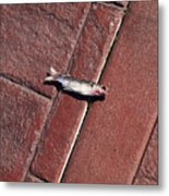Fish On The Bricks Metal Print
