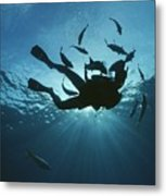 Fish Swim Around A Diver In The Cayman Metal Print