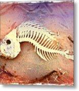 Fishbones Metal Print