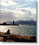 Fisherman In Nice France Metal Print
